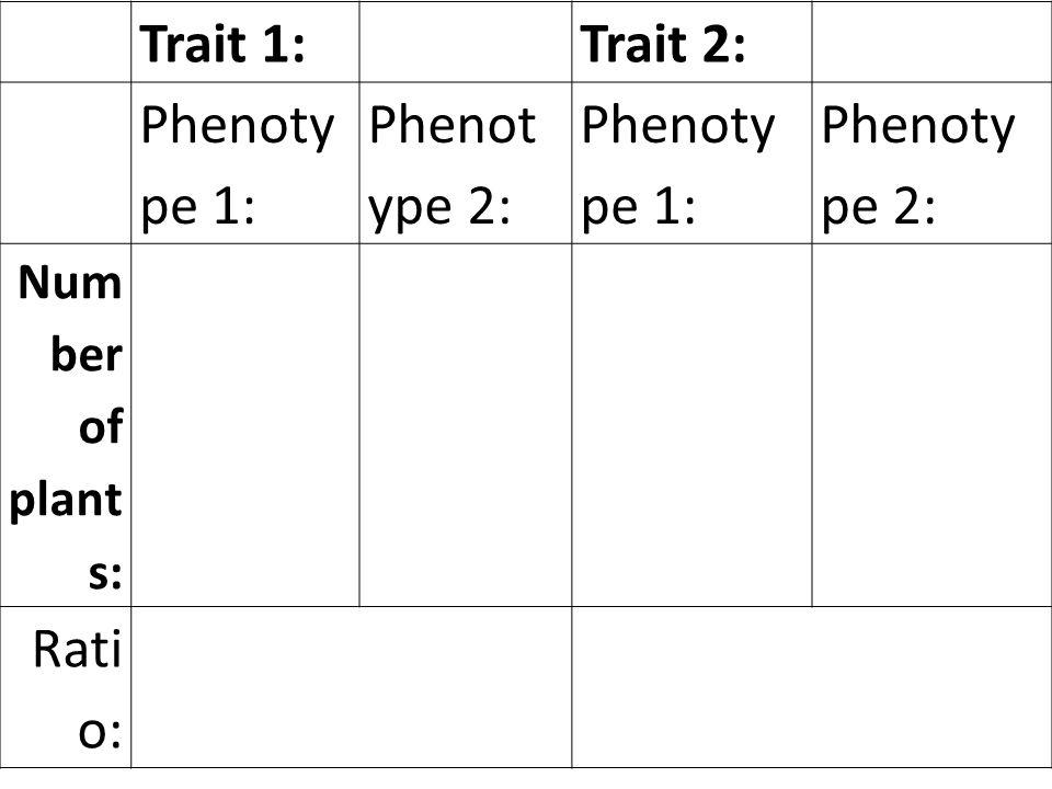 Trait 1: Trait 2: Phenotype 1: Phenotype 2: Number of plants: Ratio: