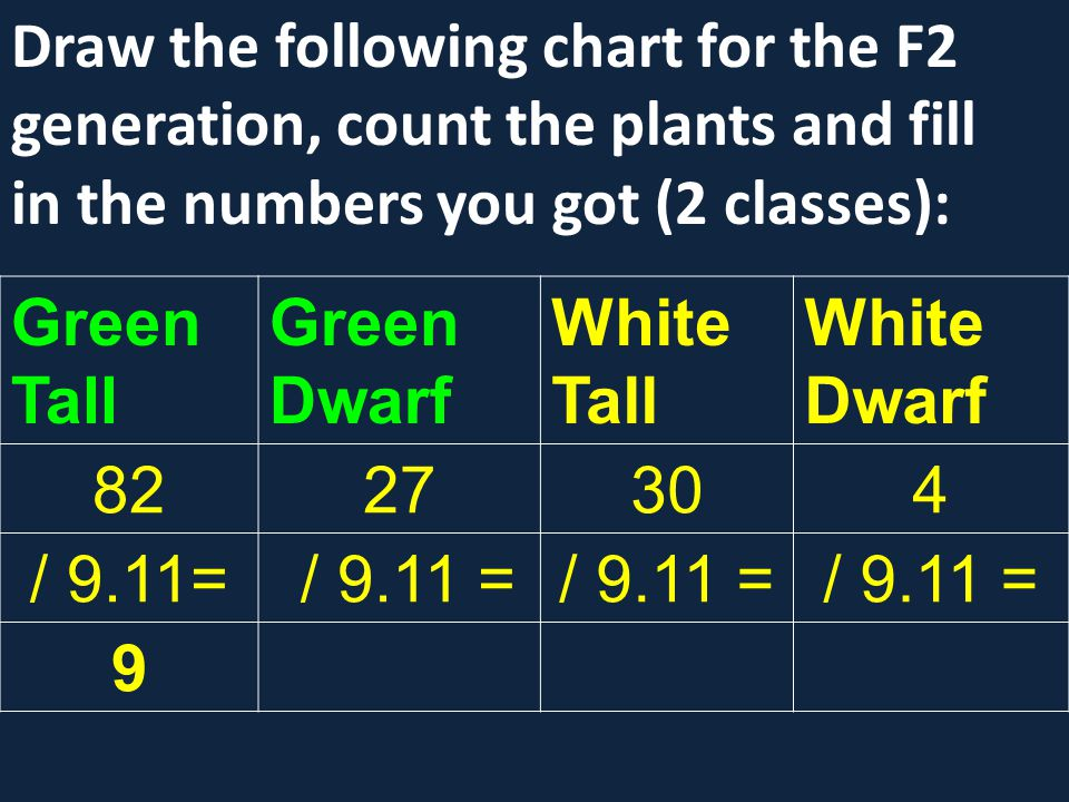 Draw the following chart for the F2 generation, count the plants and fill in the numbers you got (2 classes):