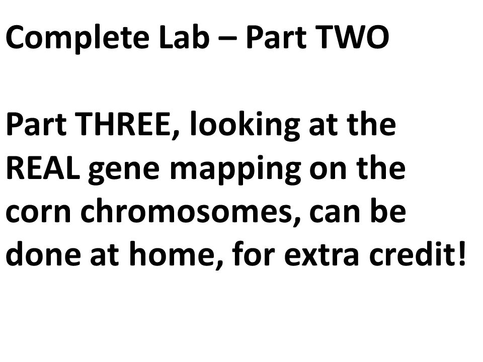 Complete Lab – Part TWO Part THREE, looking at the REAL gene mapping on the corn chromosomes, can be done at home, for extra credit!