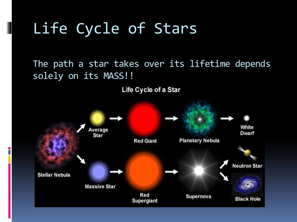 Life Cycle of Stars The path a star takes over its lifetime depends solely on its MASS!!