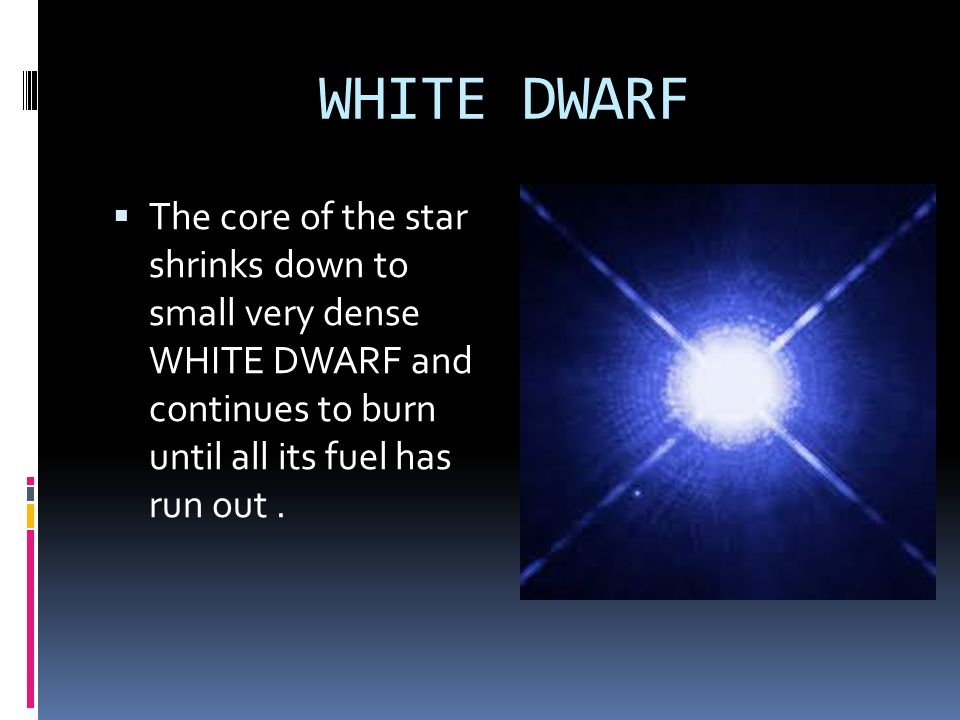 WHITE DWARF The core of the star shrinks down to small very dense WHITE DWARF and continues to burn until all its fuel has run out .