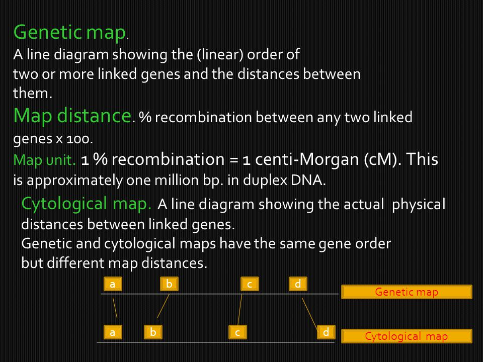 Map distance. % recombination between any two linked