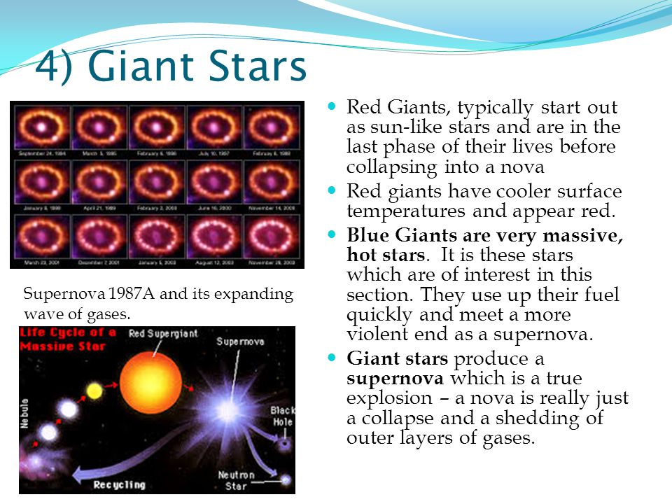 4) Giant Stars Red Giants, typically start out as sun-like stars and are in the last phase of their lives before collapsing into a nova.