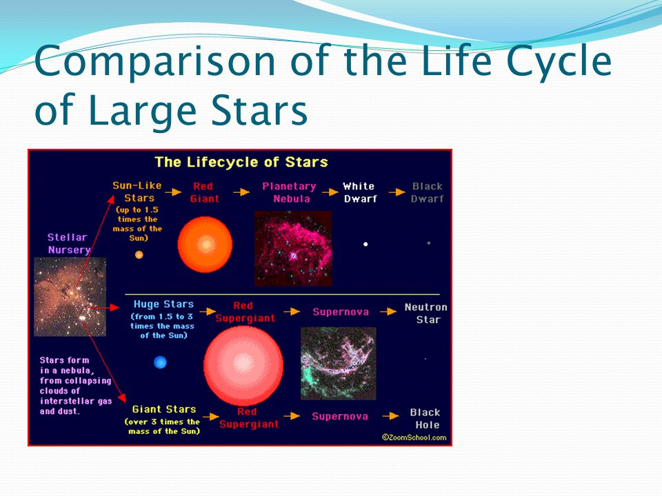 Comparison of the Life Cycle of Large Stars