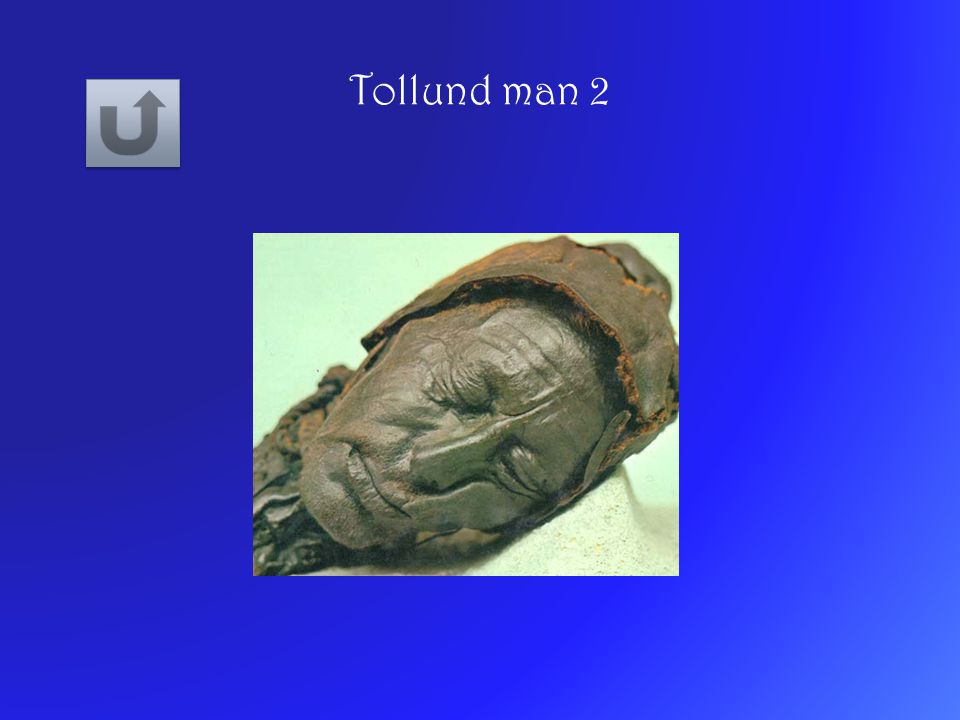 Tollund man 2