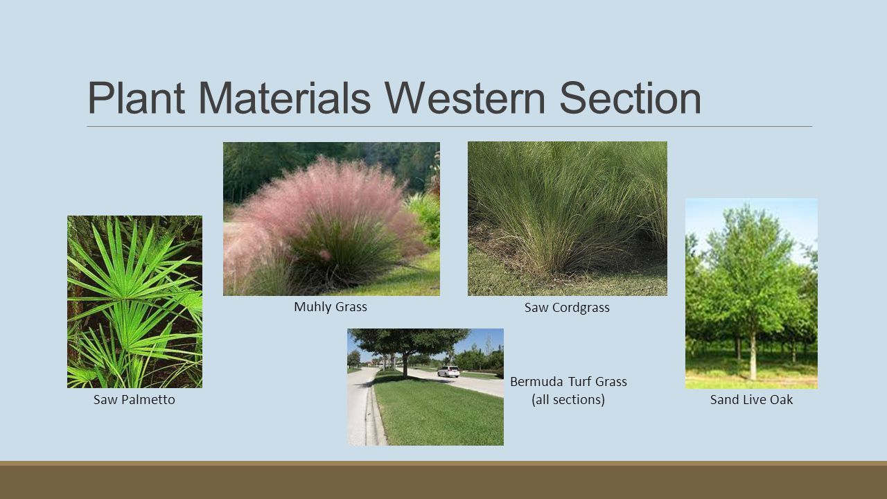 Plant Materials Western Section