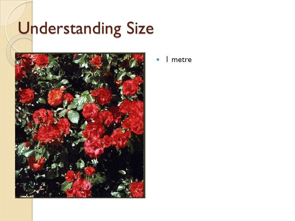 Understanding Size 1 metre