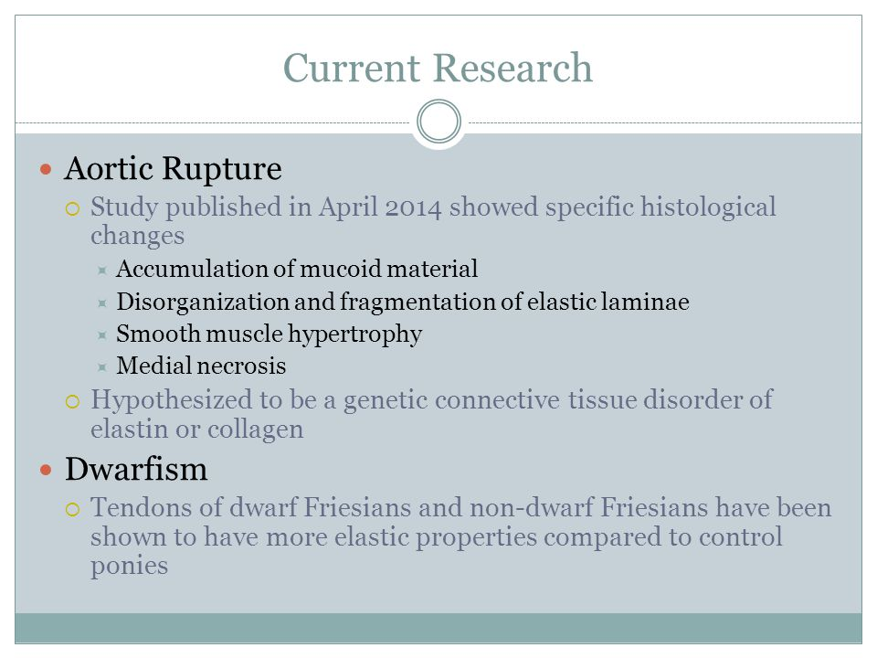 Current Research Aortic Rupture Dwarfism