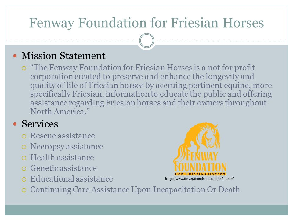 Fenway Foundation for Friesian Horses