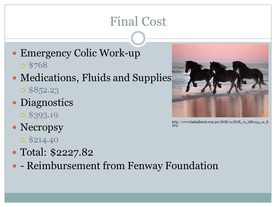 Final Cost Emergency Colic Work-up Medications, Fluids and Supplies