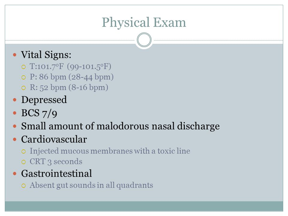 Physical Exam Vital Signs: Depressed BCS 7/9