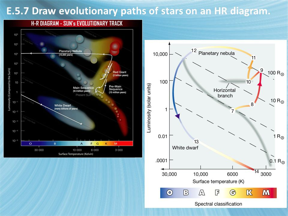 E.5.7 Draw evolutionary paths of stars on an HR diagram.