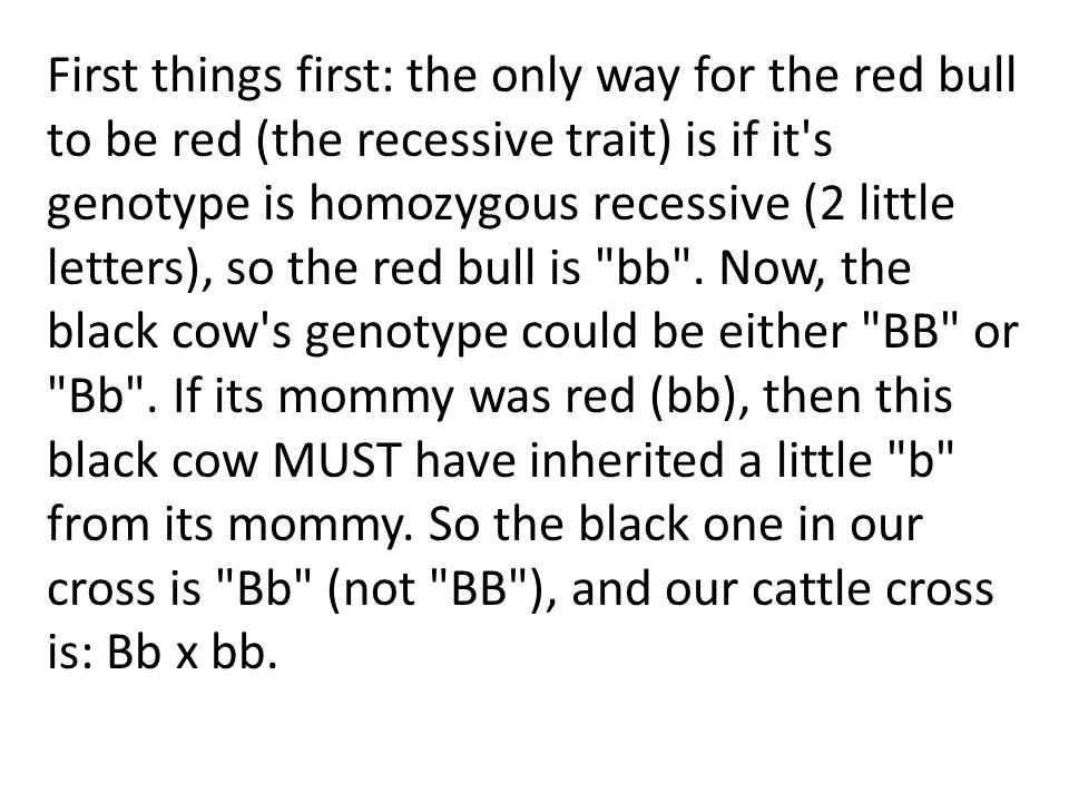 First things first: the only way for the red bull to be red (the recessive trait) is if it s genotype is homozygous recessive (2 little letters), so the red bull is bb .