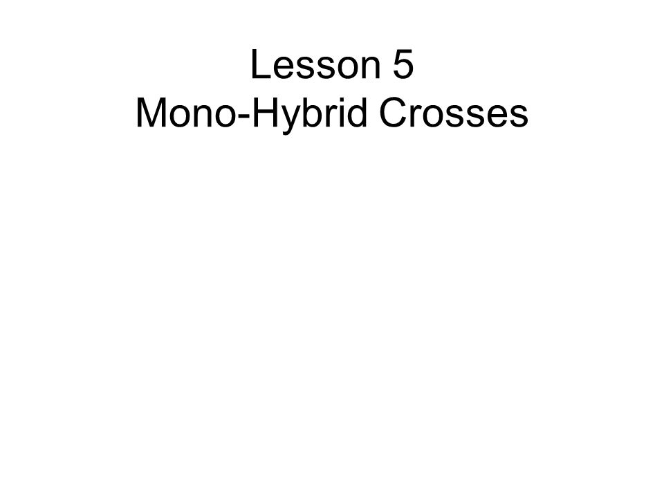 Lesson 5 Mono-Hybrid Crosses