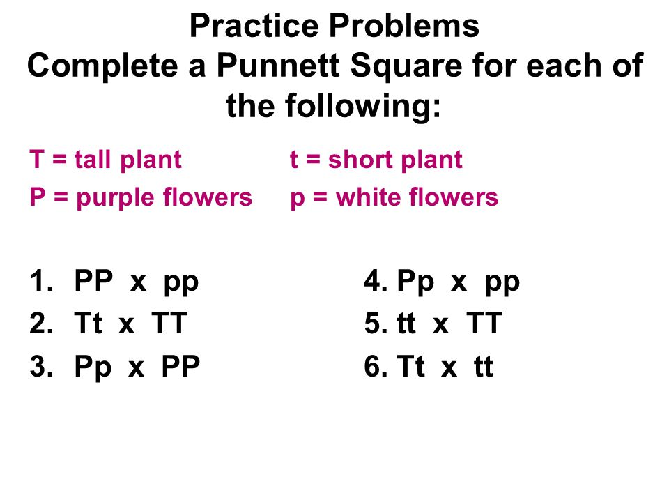 Practice Problems Complete a Punnett Square for each of the following: