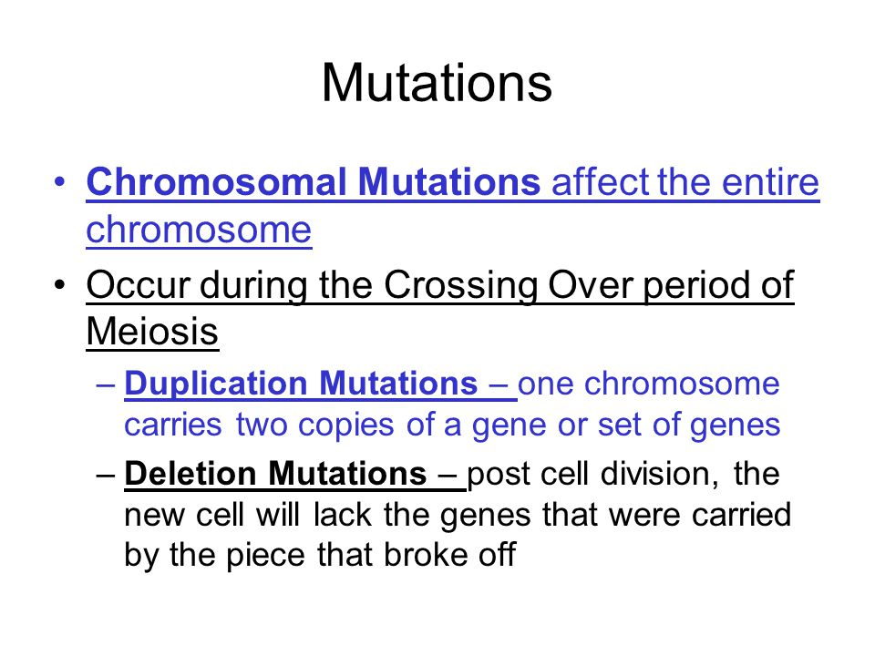 chromosomal mutations worksheet Termolak – Chromosome Worksheet