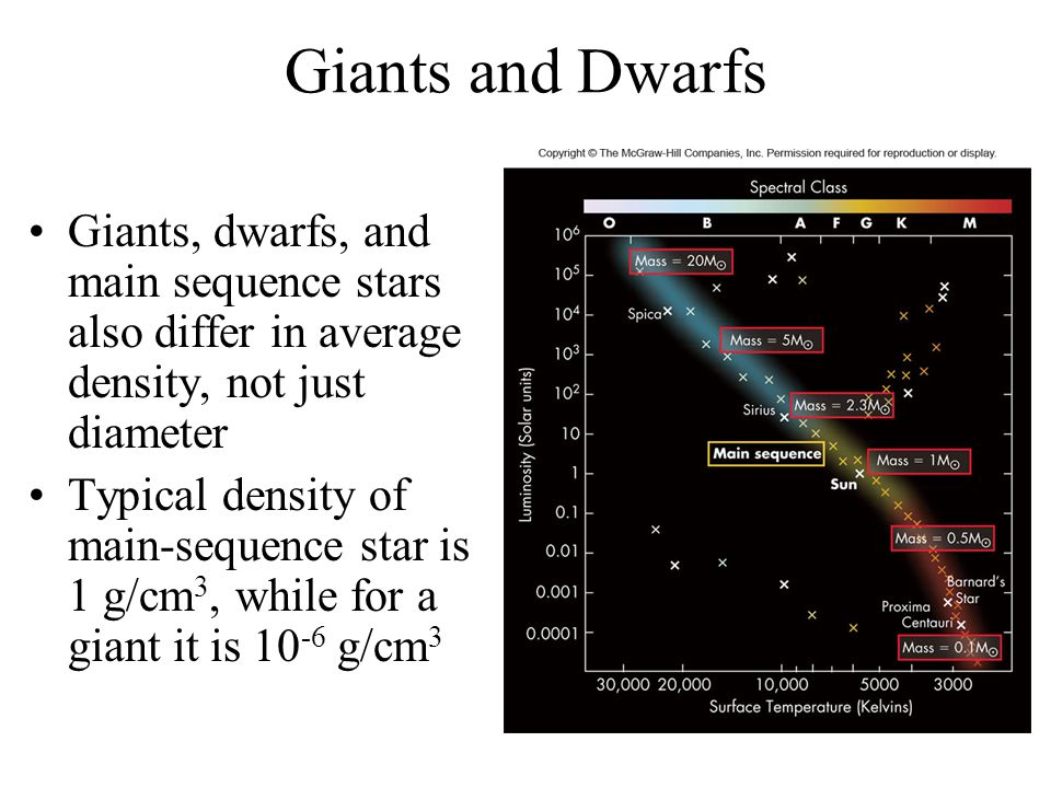 Giants and Dwarfs Giants, dwarfs, and main sequence stars also differ in average density, not just diameter.