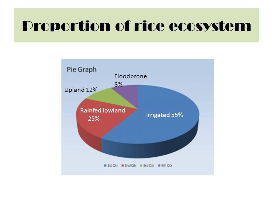 Proportion of rice ecosystem