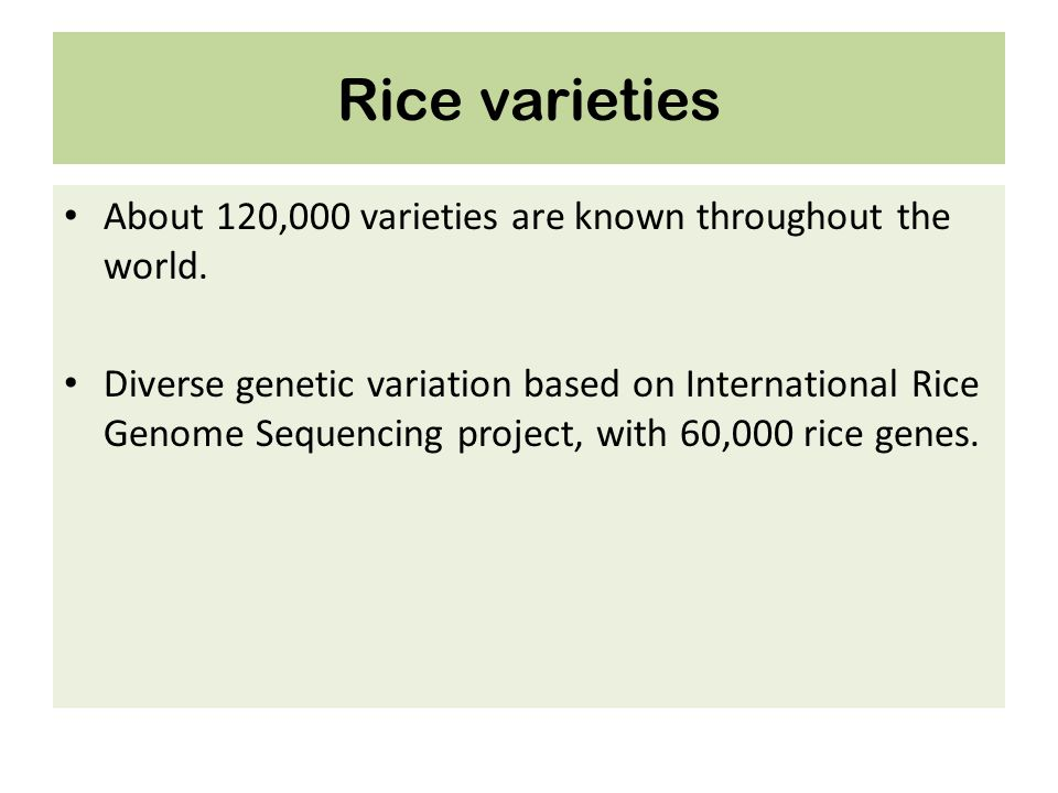 Rice varieties About 120,000 varieties are known throughout the world.
