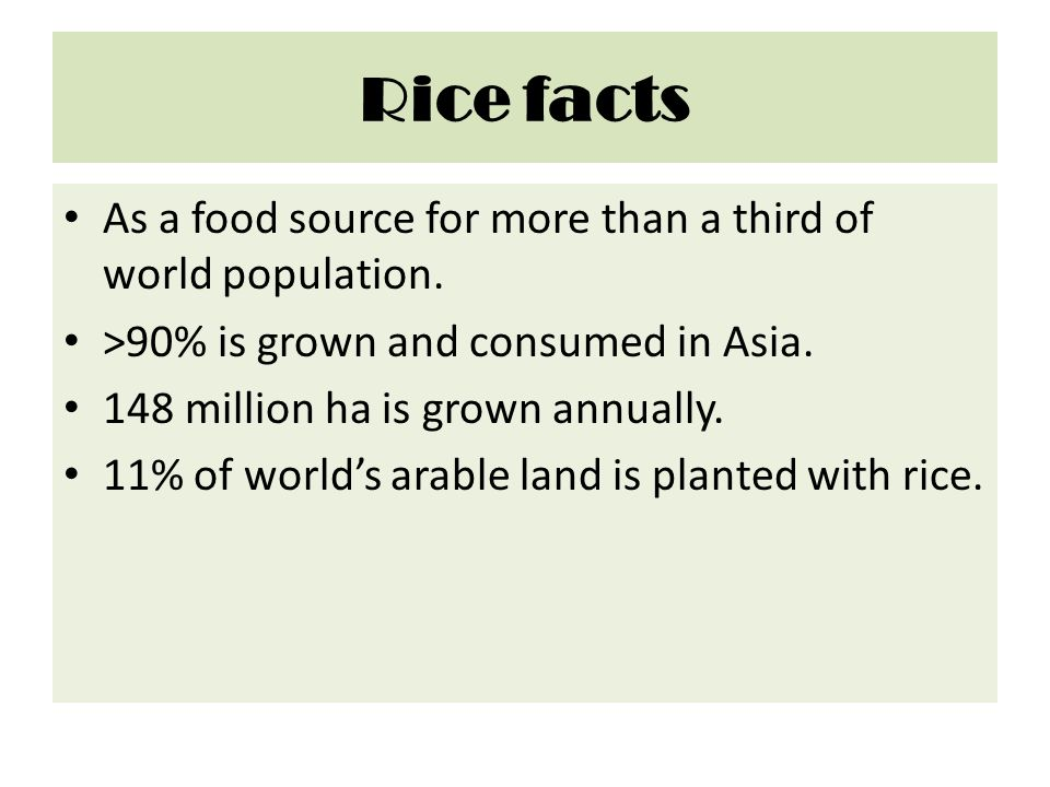 Rice facts As a food source for more than a third of world population.