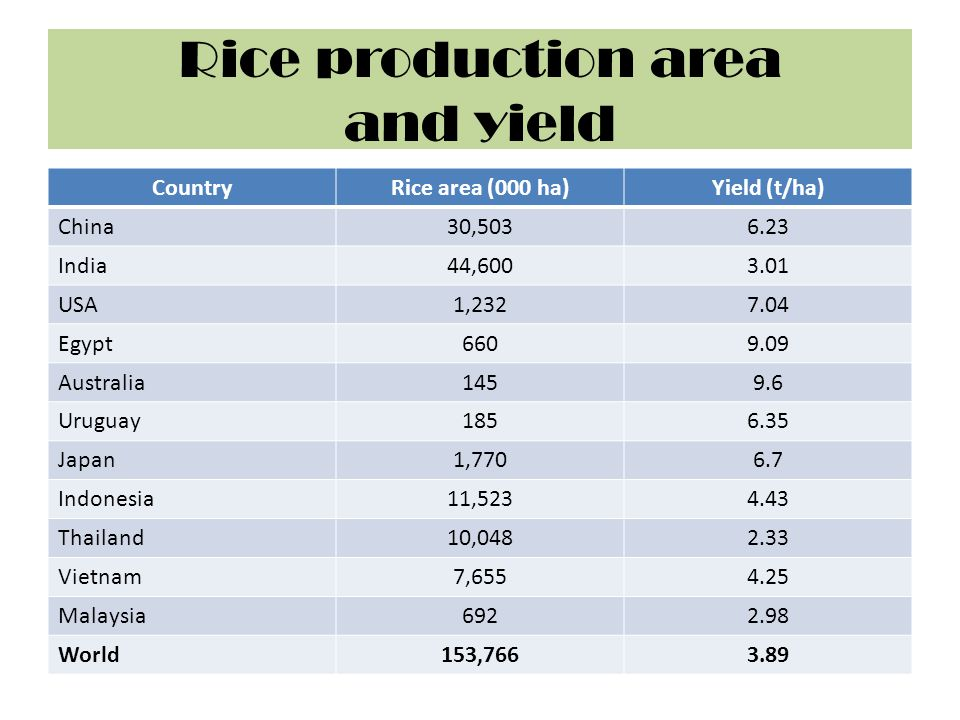 Rice production area and yield