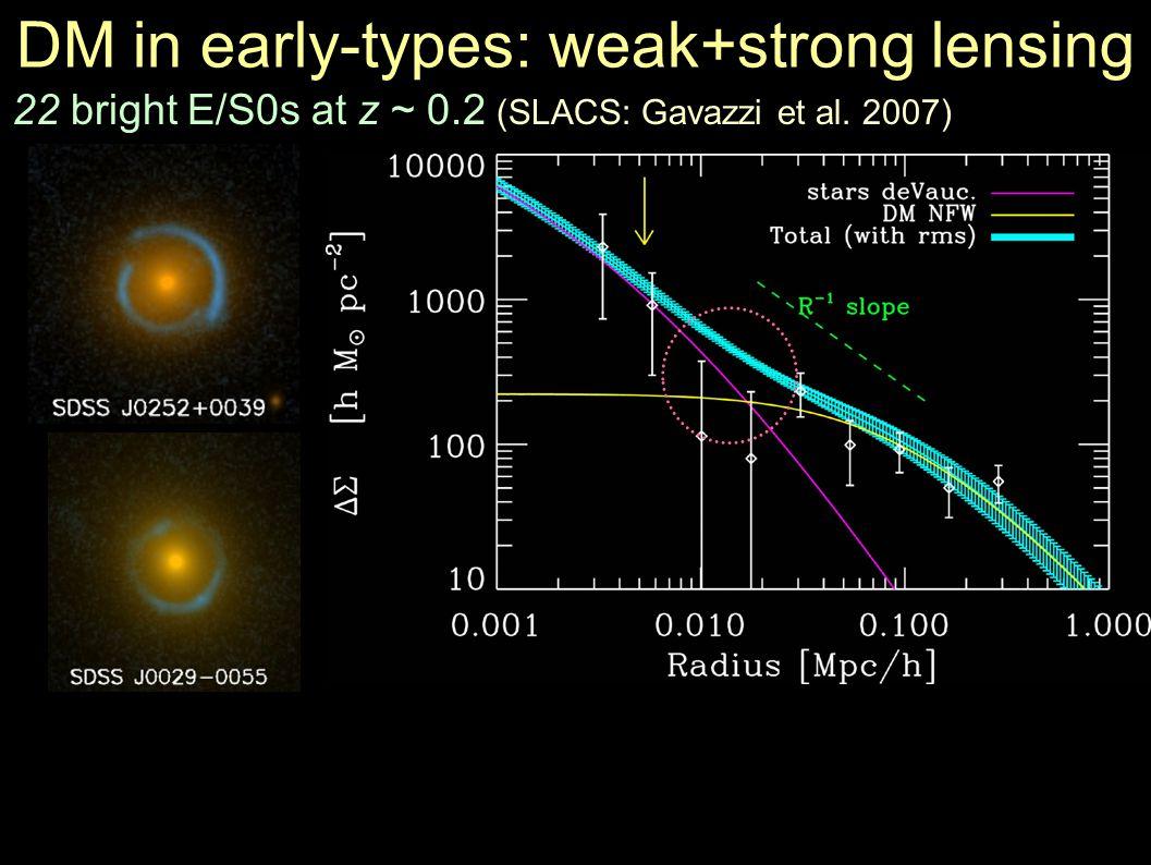 DM in early-types: weak+strong lensing