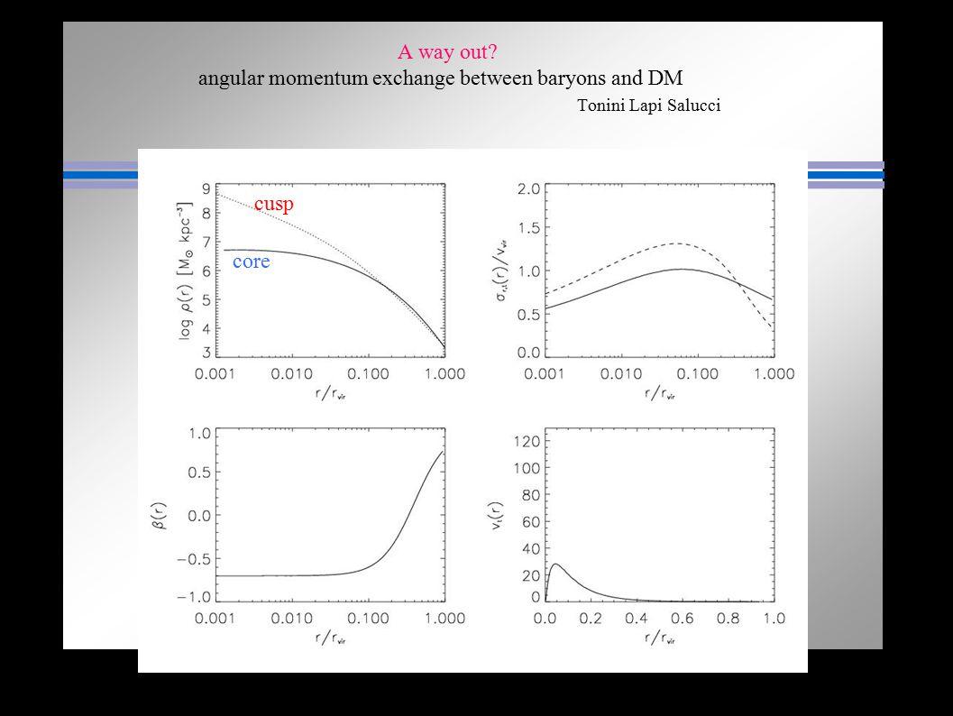 A way out angular momentum exchange between baryons and DM Tonini Lapi Salucci