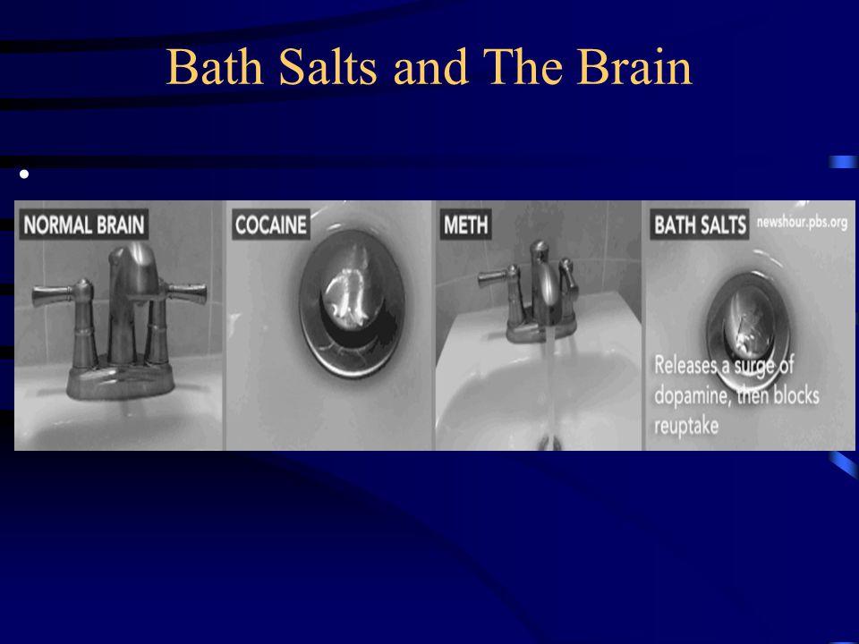 Bath Salts and The Brain