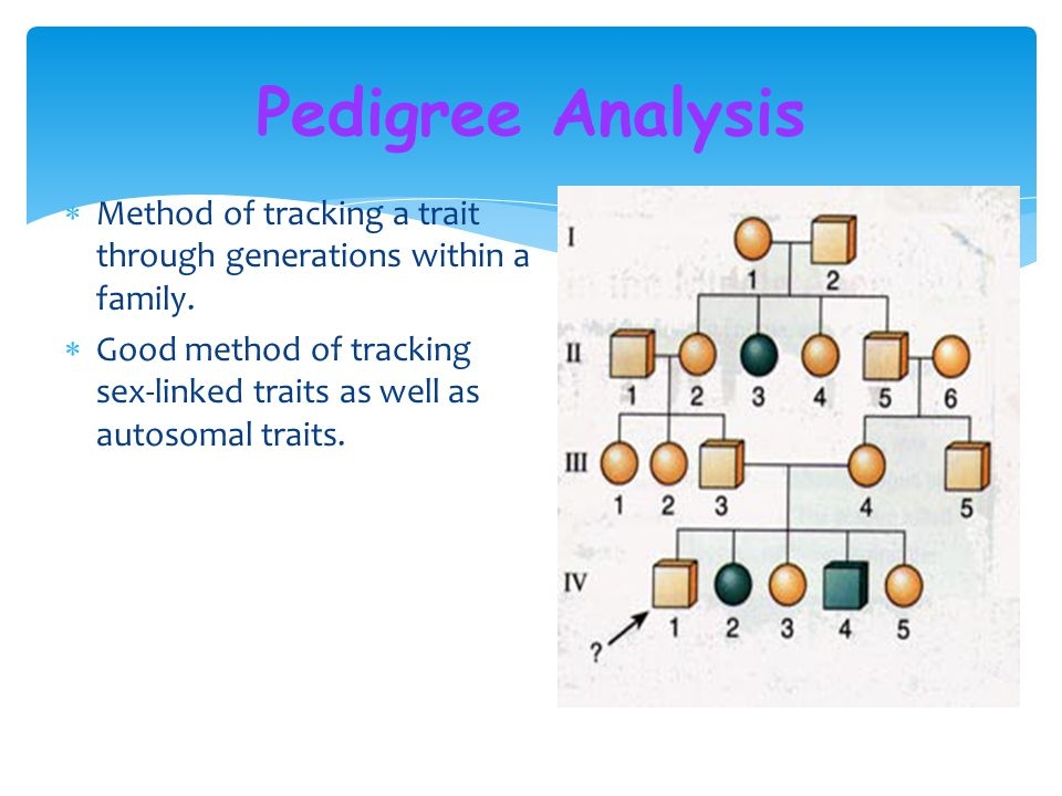 Pedigree Analysis Method of tracking a trait through generations within a family.