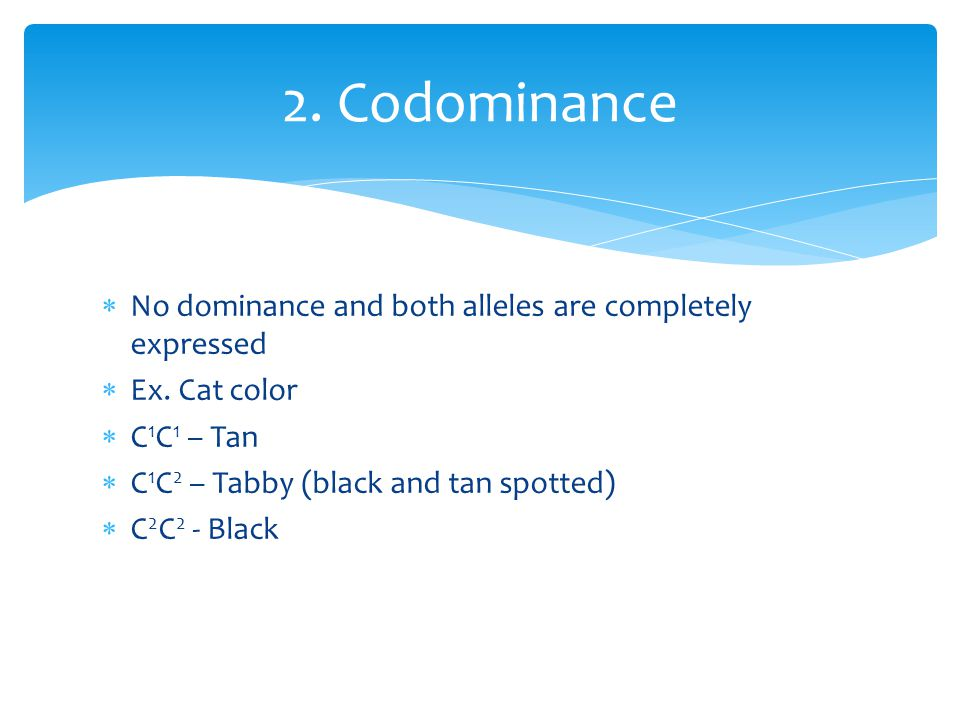 2. Codominance No dominance and both alleles are completely expressed
