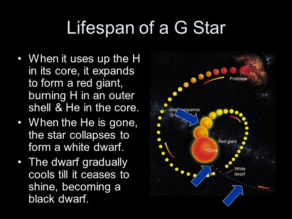 Lifespan of a G Star When it uses up the H in its core, it expands to form a red giant, burning H in an outer shell & He in the core.