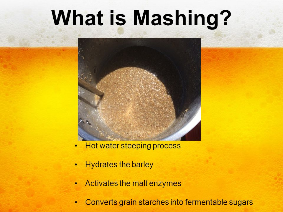 What is Mashing Hot water steeping process Hydrates the barley