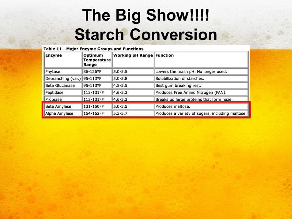 The Big Show!!!! Starch Conversion