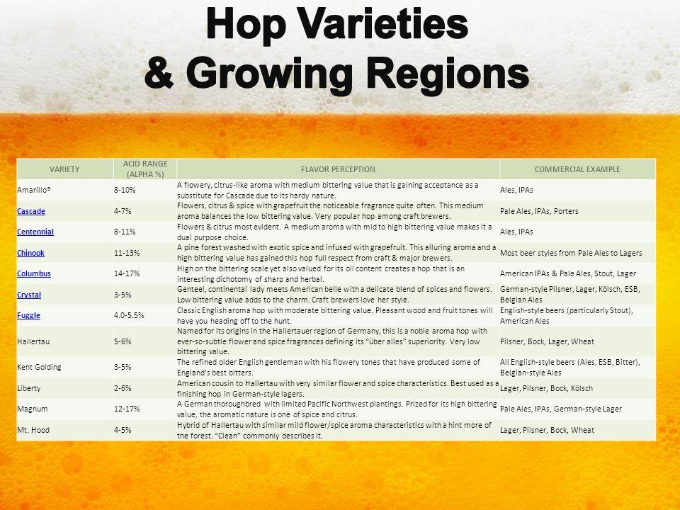 Hop Varieties & Growing Regions