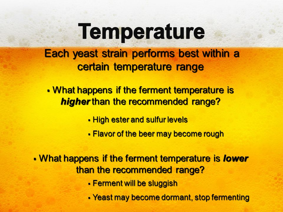 Each yeast strain performs best within a certain temperature range