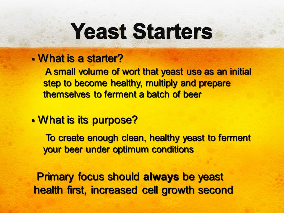 Yeast Starters What is a starter What is its purpose
