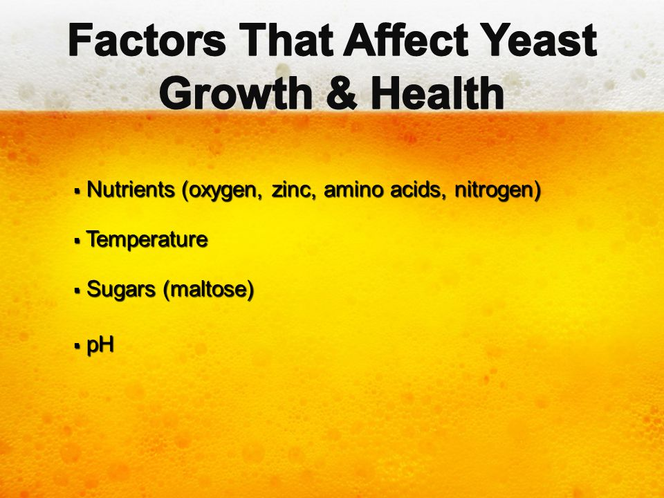 Factors That Affect Yeast Growth & Health