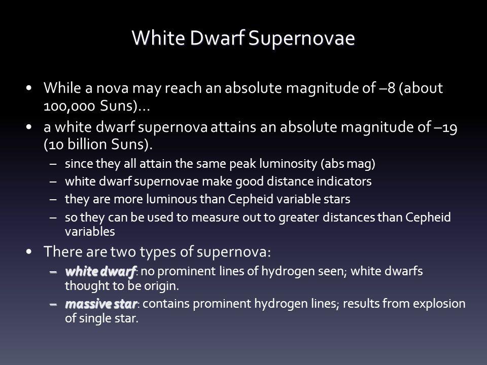 White Dwarf Supernovae