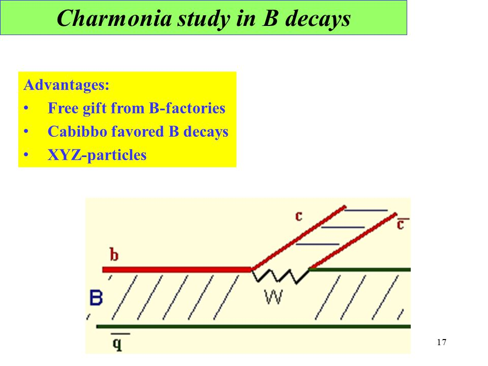 Charmonia study in B decays