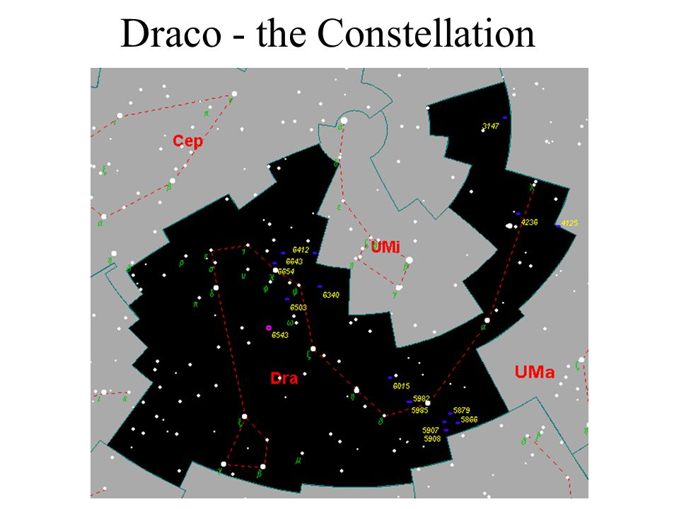 Draco - the Constellation