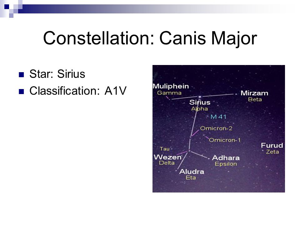 Constellation: Canis Major