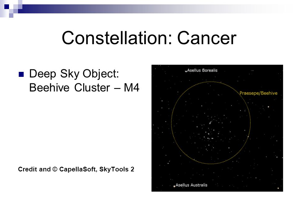 Constellation: Cancer