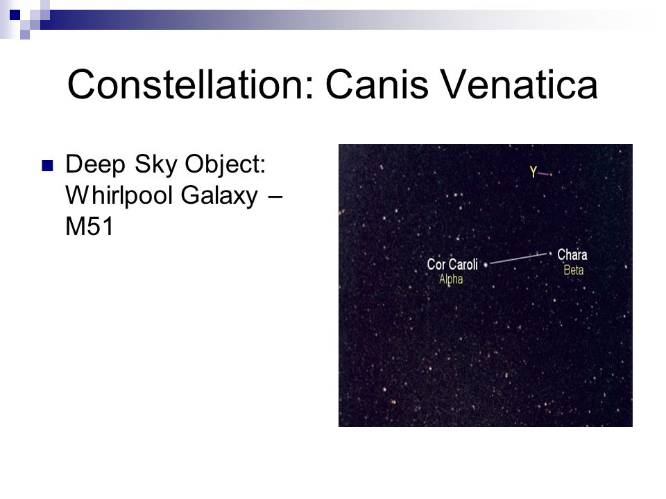 Constellation: Canis Venatica