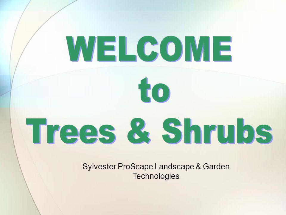 Sylvester ProScape Landscape U0026 Garden Technologies