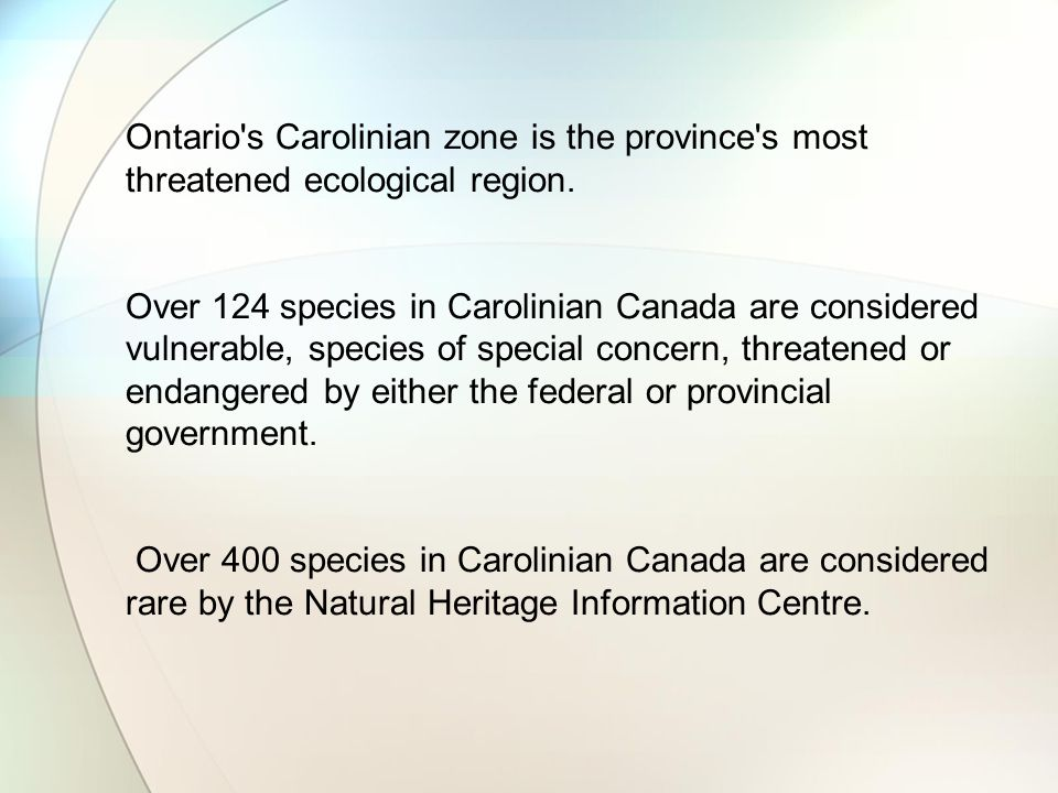 Ontario s Carolinian zone is the province s most threatened ecological region.