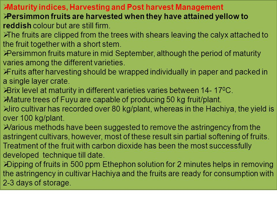Maturity indices, Harvesting and Post harvest Management