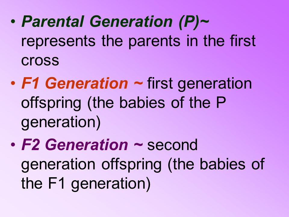 Parental Generation (P)~ represents the parents in the first cross
