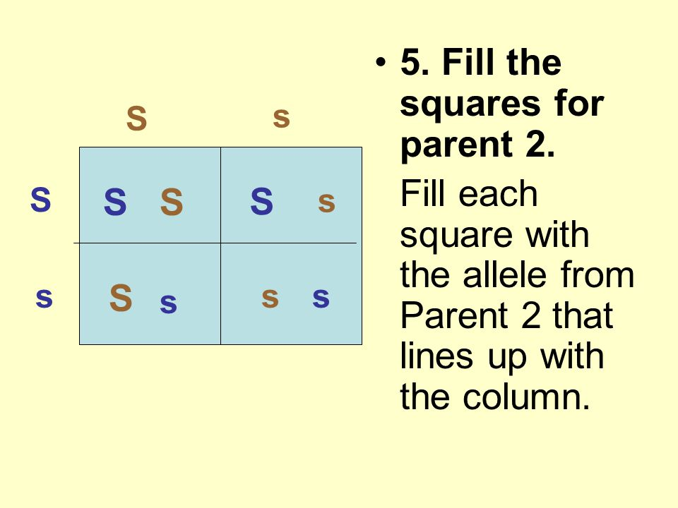 5. Fill the squares for parent 2.