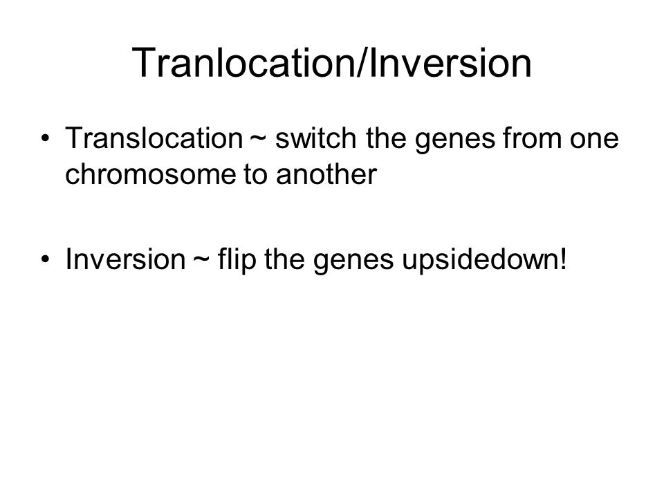 Tranlocation/Inversion