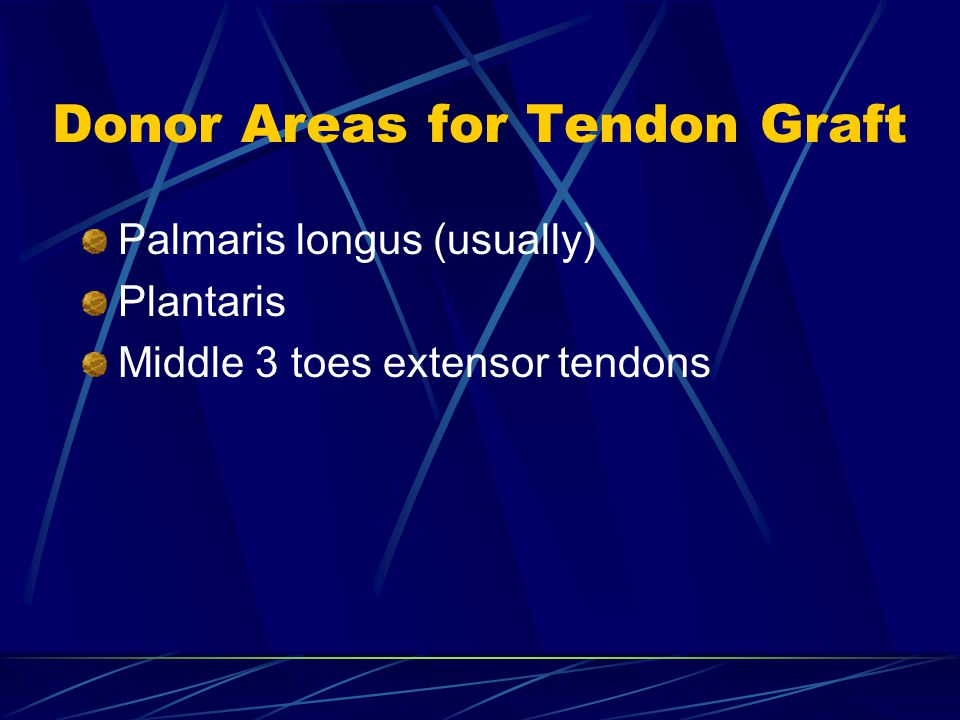Donor Areas for Tendon Graft